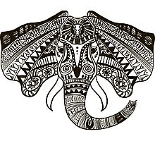 the head of an elephant Photographic Print