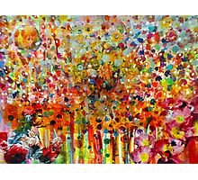 Colourful Boquet Photographic Print