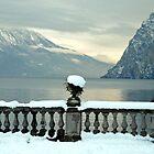 Winter at lake Garda by Arie Koene