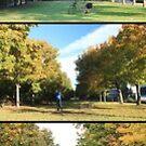 seasons by wistine