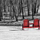 The Red Seats by vigor