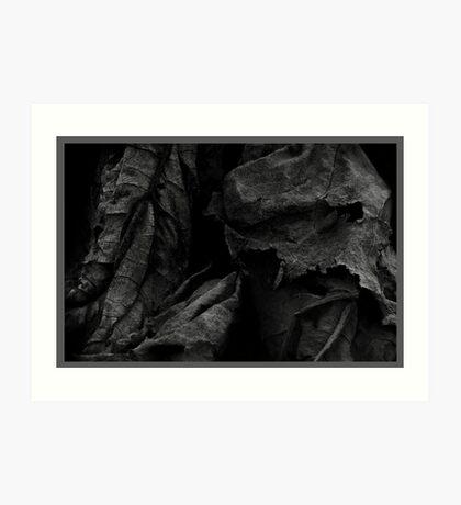 Decay #3 Art Print