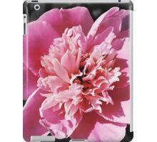 Blush iPad Case/Skin