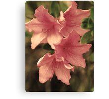 Faerie Flora Canvas Print