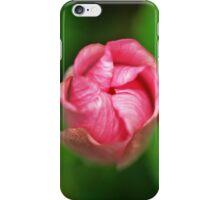 Fior iPhone Case/Skin