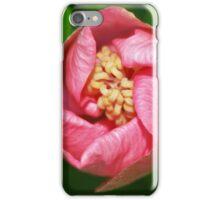 Fleurir iPhone Case/Skin