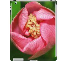 Fleurir iPad Case/Skin
