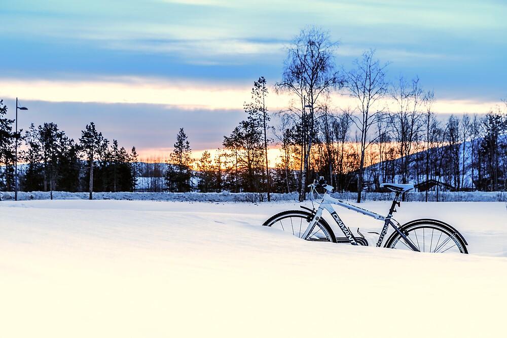 A Snowy Bike Ride by KarenMcDonald