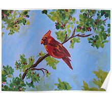 A Cardinal From Heaven Poster