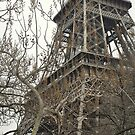 Winter Moods - Paris by chijude