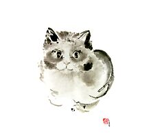 Cat Cats Kitten Funny Meow animal pet ink painting Photographic Print