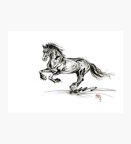 Horse stallion black wild animal 2014 year ink painting Photographic Print