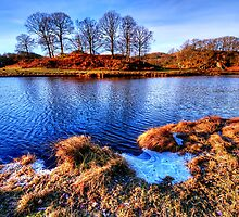 River Brathay by English Landscape Prints