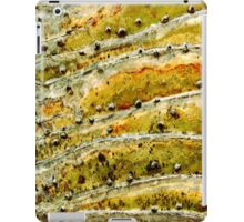 Stonehill Glen iPad Case/Skin