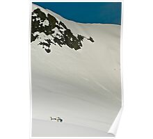 The Fox and Franz Joseph Glaciers Poster