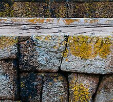 Mousehole Harbour Wall by Jono Hewitt