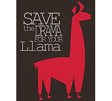 Save the Drama for your Llama Photographic Print