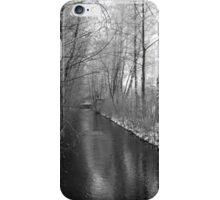 Winter Reise iPhone Case/Skin