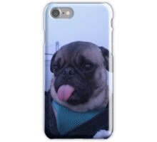 Cheeky pug  iPhone Case/Skin