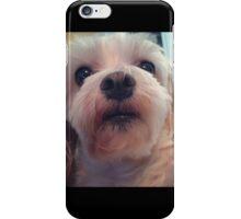 puppy face iPhone Case/Skin
