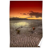 Mooring Buoy Sunset Poster