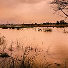 Floods 3 by JEZ22