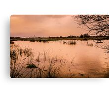 Floods 3 Canvas Print