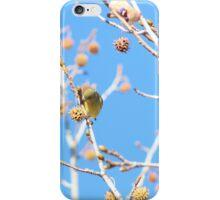 Precious Yellow Finch iPhone Case/Skin