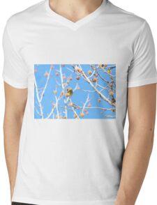Precious Yellow Finch Mens V-Neck T-Shirt