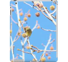 Precious Yellow Finch iPad Case/Skin