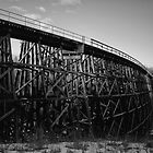 Thunderbird Trestle by Rick Magnell