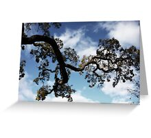 I Touch the Sky Greeting Card