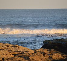 Wave Heading For Rocks by Adrian Wale
