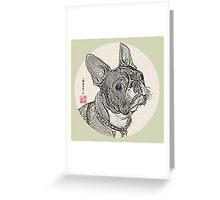 Boston Terrier_2 Greeting Card