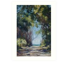 Beach Track on the road to Point Plomer Art Print
