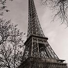 Magnificent Monochrome Eiffel Tower by Chris Hood