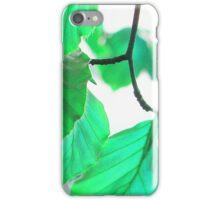 Leaves 3 iPhone Case/Skin