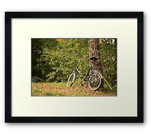 bicycle stands at the tree Framed Print