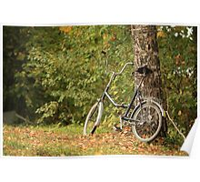 bicycle stands at the tree Poster