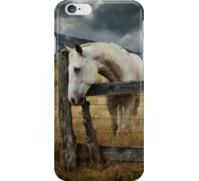 Horse Fence Sky.jpg iPhone Case/Skin