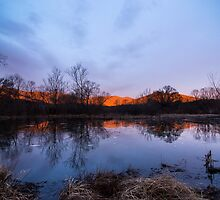 Winter Morning at Cove Lake by Jimmy Phillips