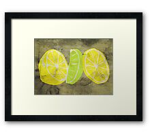 Pop Art Lemon Lime with Canvas Texture and Stains - Prints Framed Print