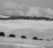 Uleybury, South Australia by Rebecca Hansen