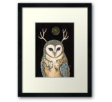 Owl Spirit Framed Print