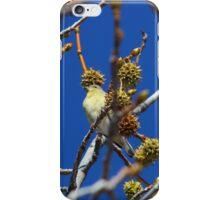 Precious Finch iPhone Case/Skin