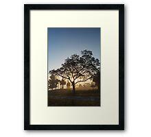 Foggy sun raise… Framed Print