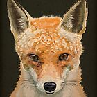 Mrs. Fox by Carl Conway