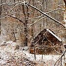 Mountain Snow by JKKimball