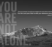 You are not alone by Jeri Stunkard