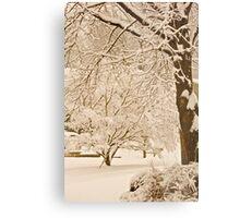 Sepia snow... Metal Print
